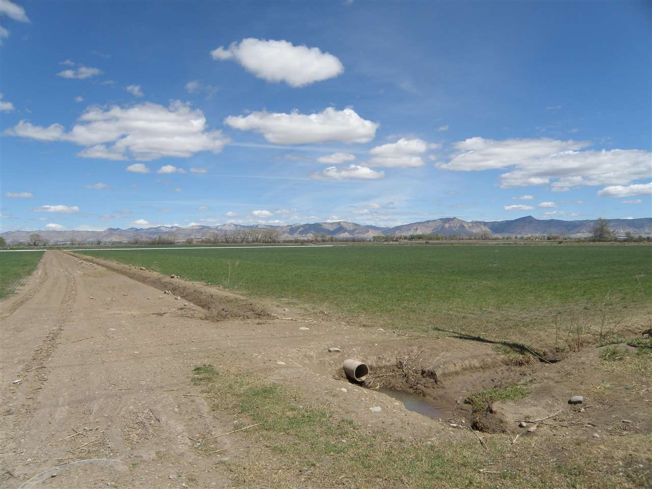 TBD L Road Property Photo - Fruita, CO real estate listing