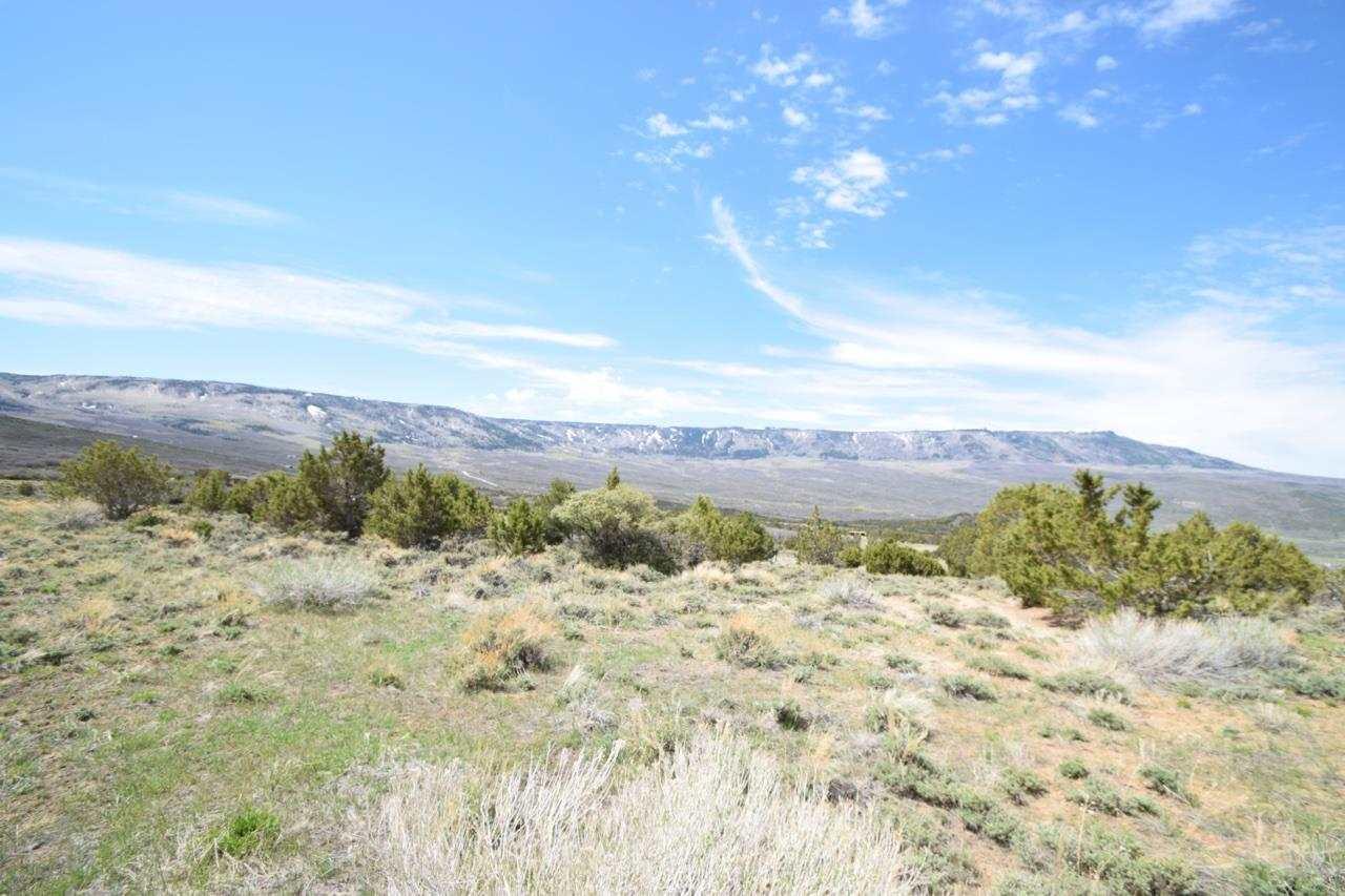 50194 Coon Creek Road Property Photo - Mesa, CO real estate listing