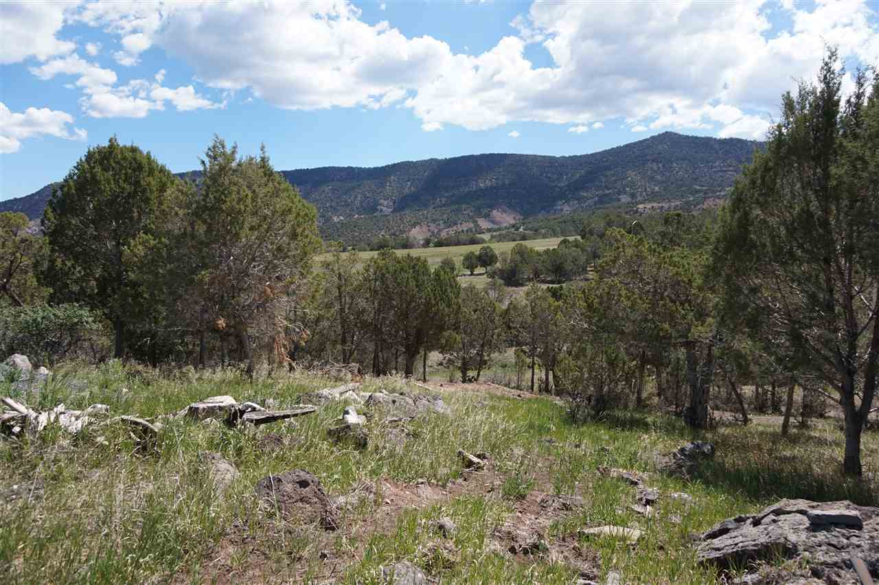 14550 N Ouray Court Property Photo