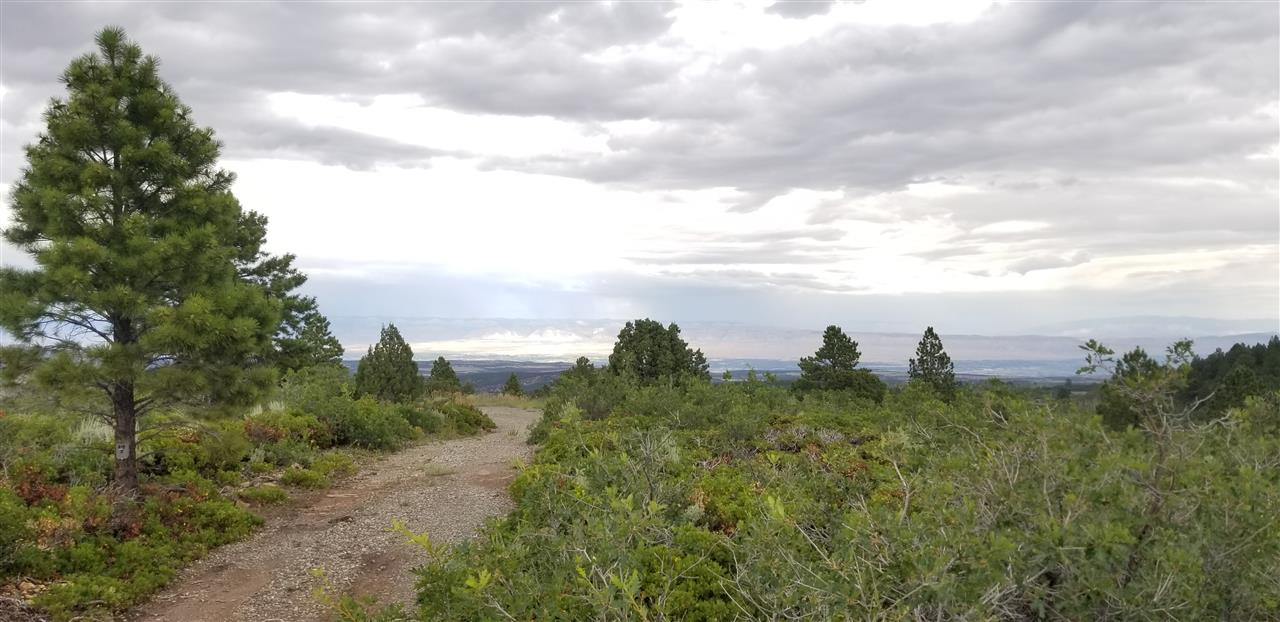 17150 S H 3/10 Road Property Photo
