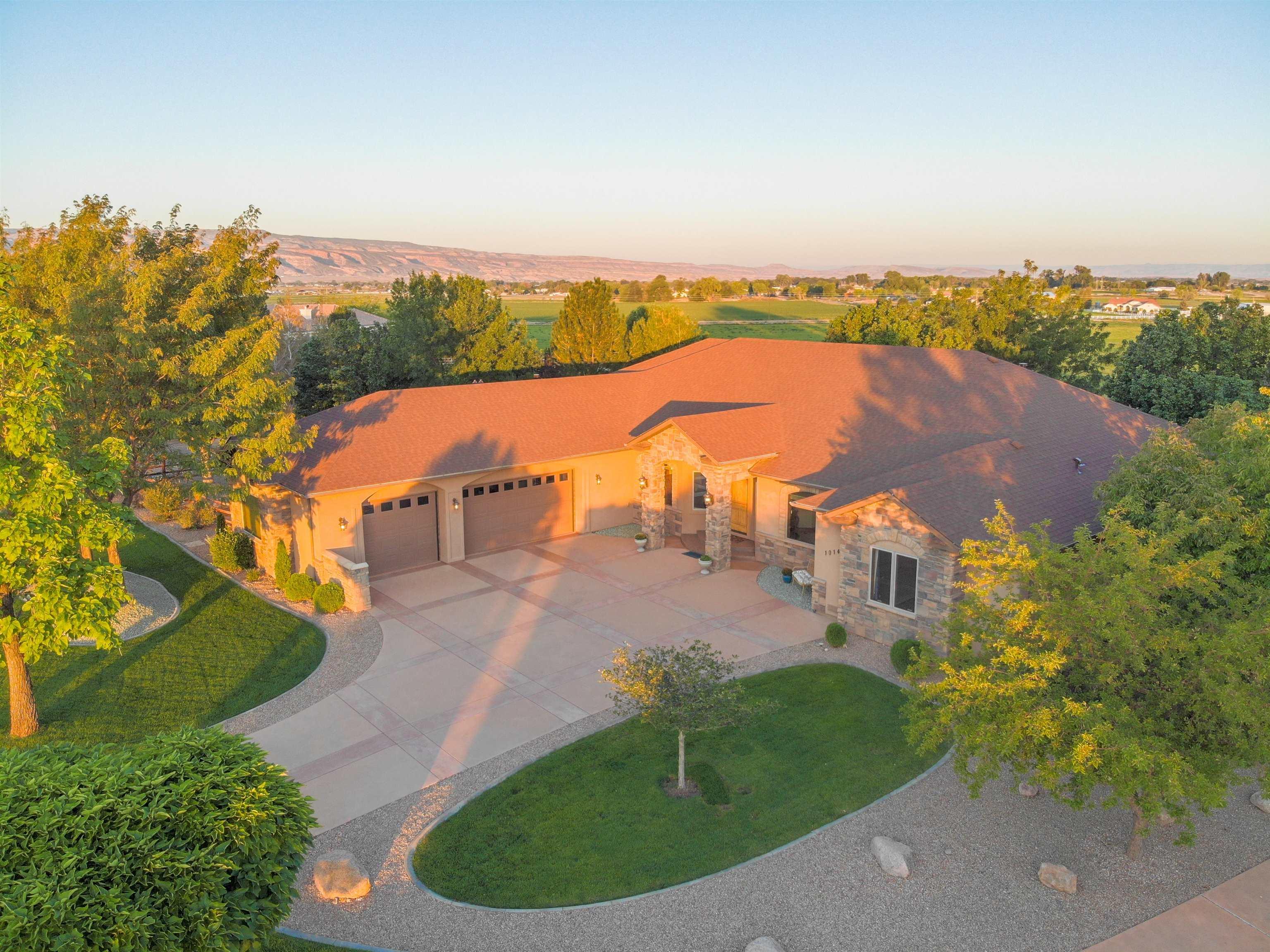 1014 Pritchard Mesa Court Property Photo 1