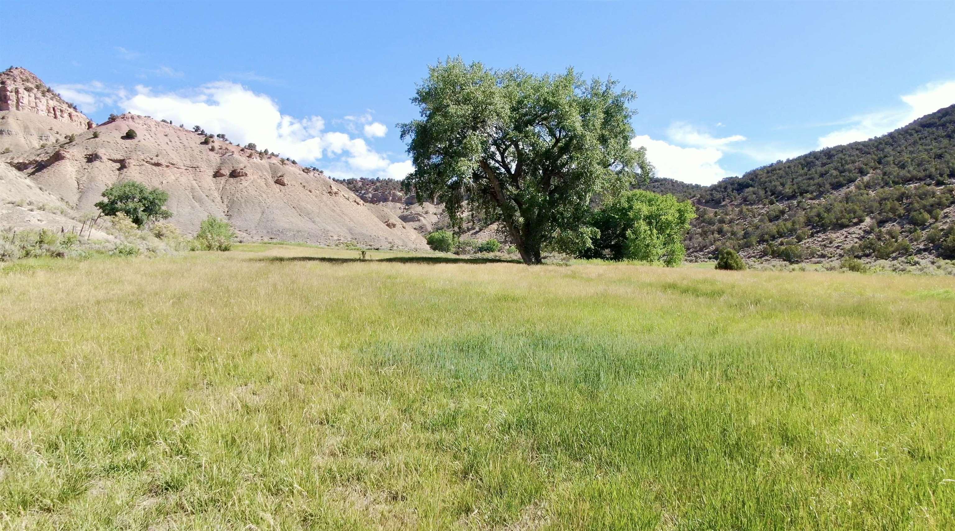 18028 George Creek Road Property Photo 12