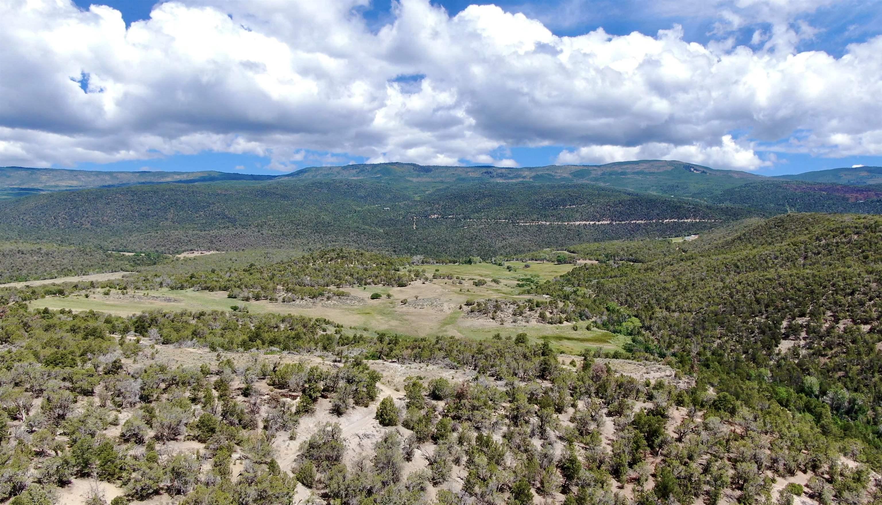 18028 George Creek Road Property Photo 20
