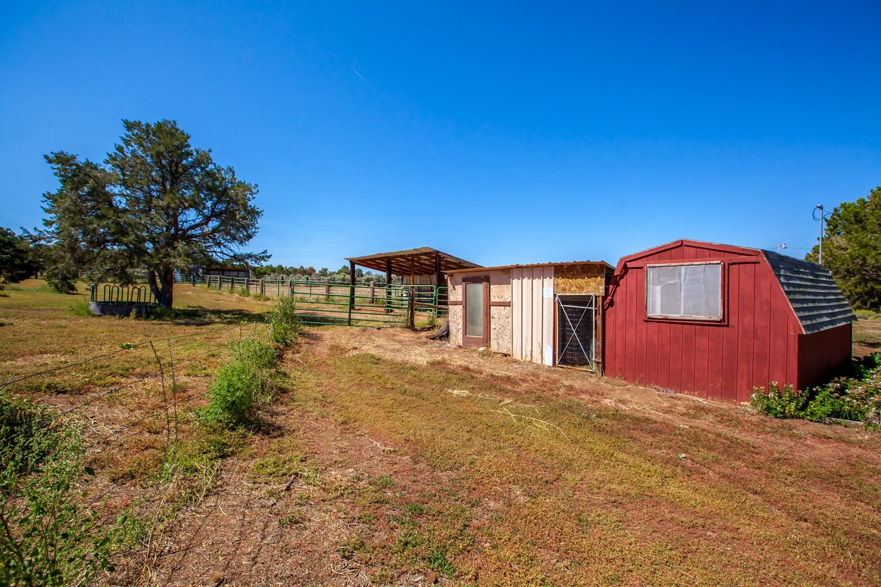 15341 Ds Road Property Photo 34