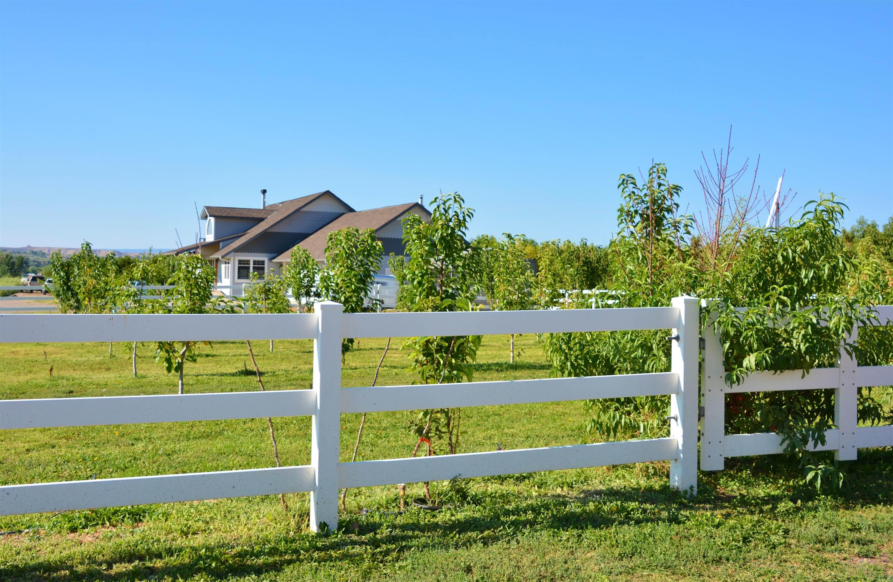 3525 G Road Property Photo 15