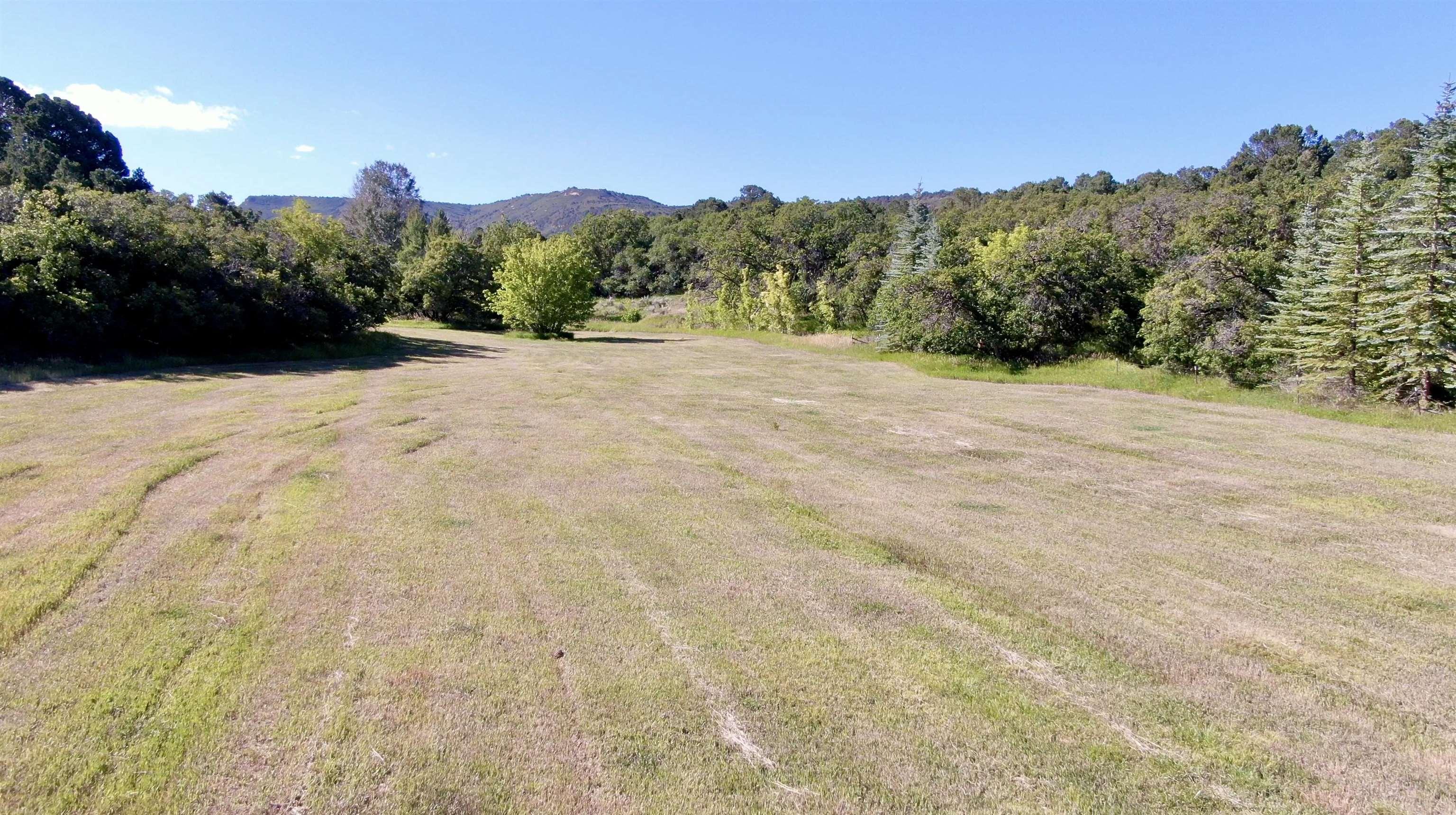 5491 S 7 1/2 Road Property Photo 34