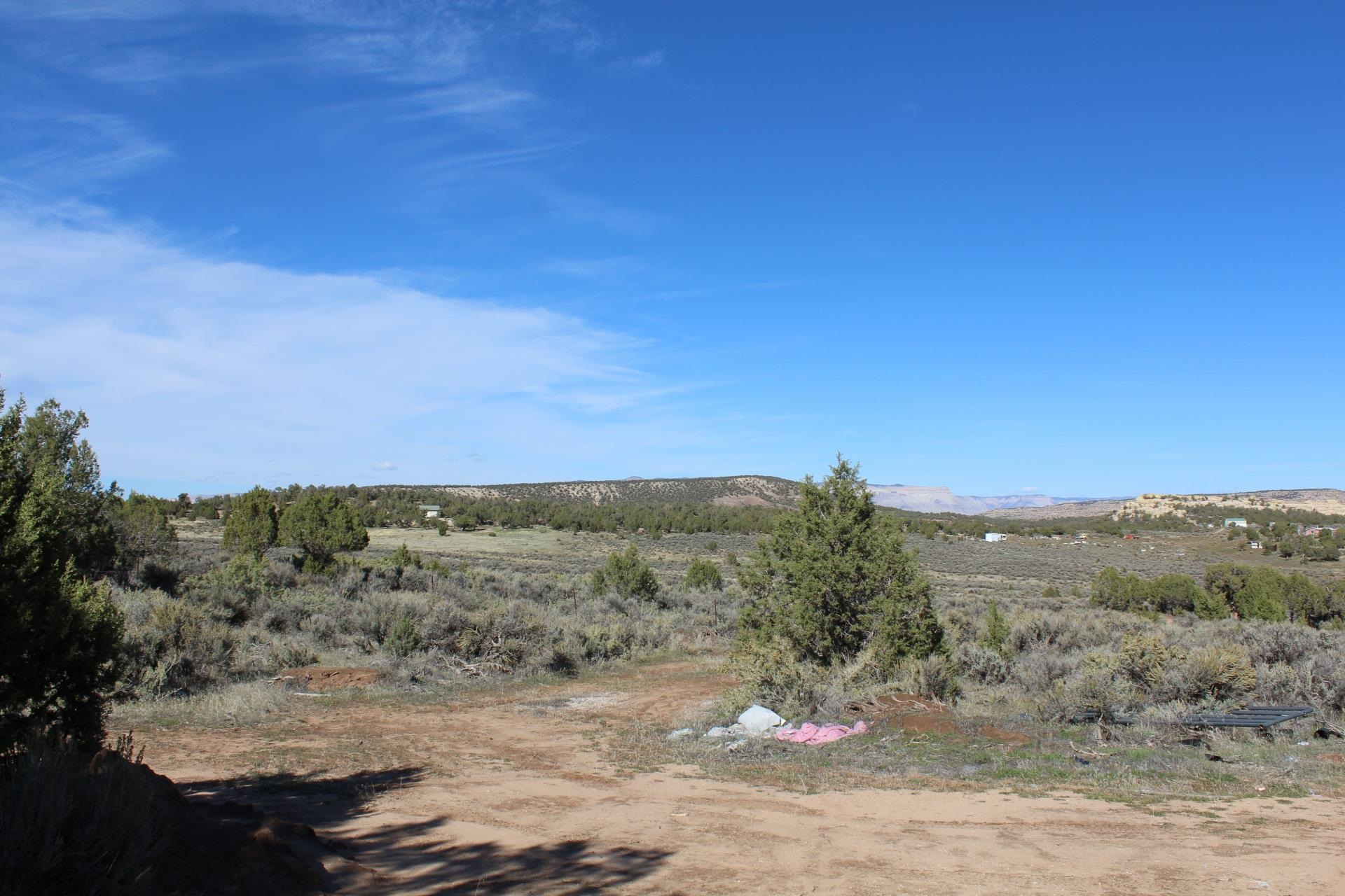 4463 Horse Canyon Road Property Picture 16