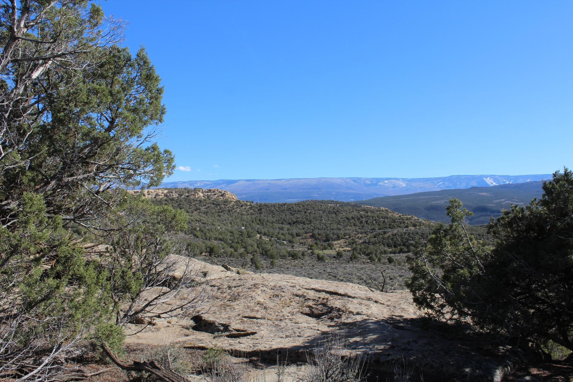4463 Horse Canyon Road Property Picture 17