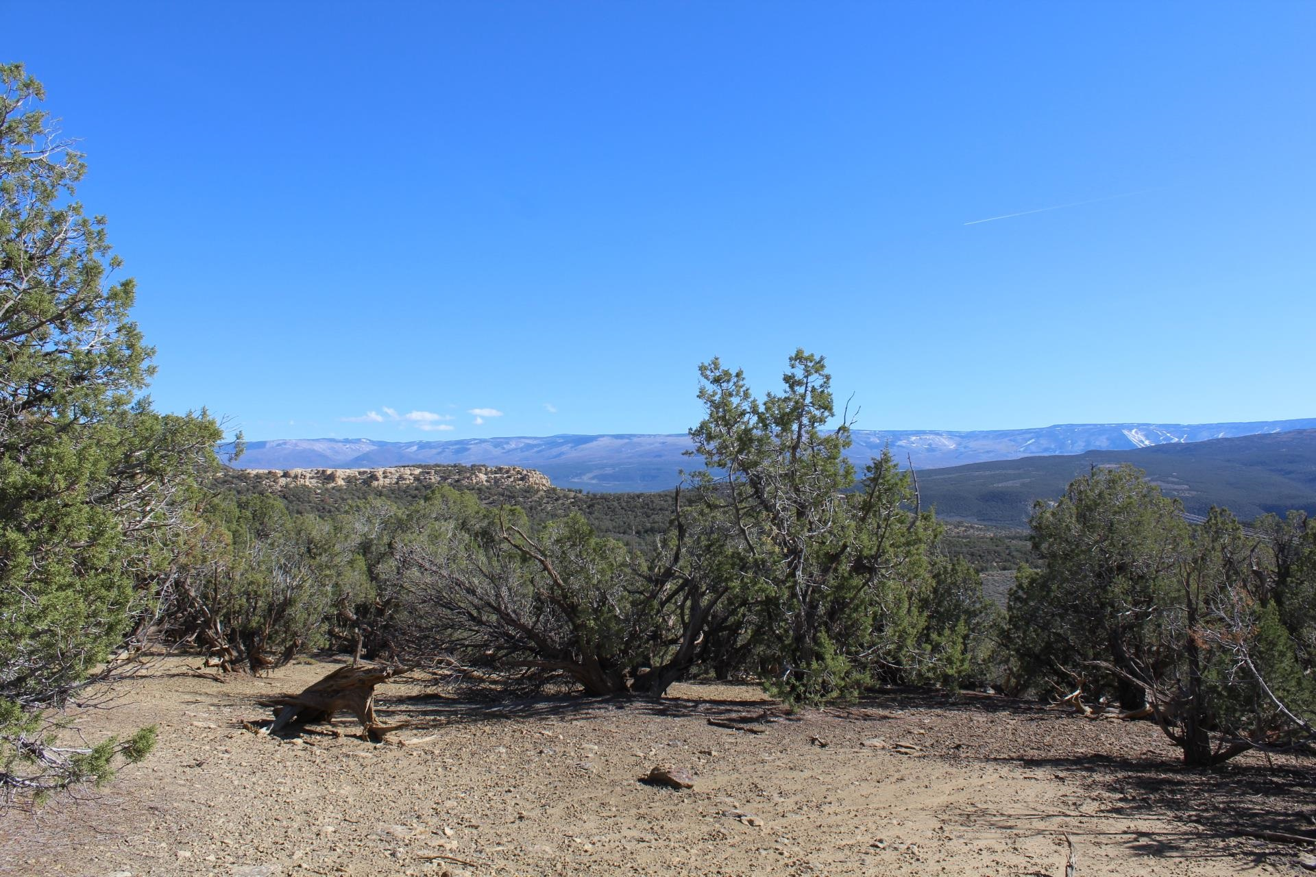 4463 Horse Canyon Road Property Picture 20