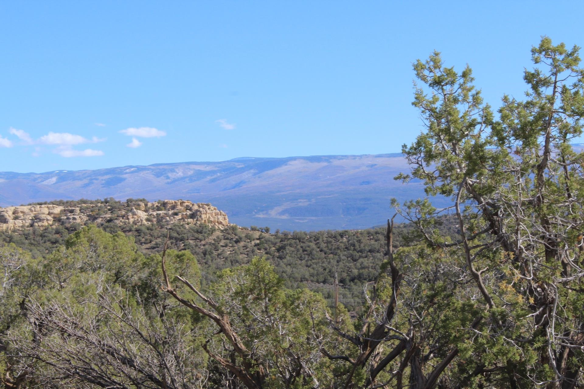 4463 Horse Canyon Road Property Picture 21