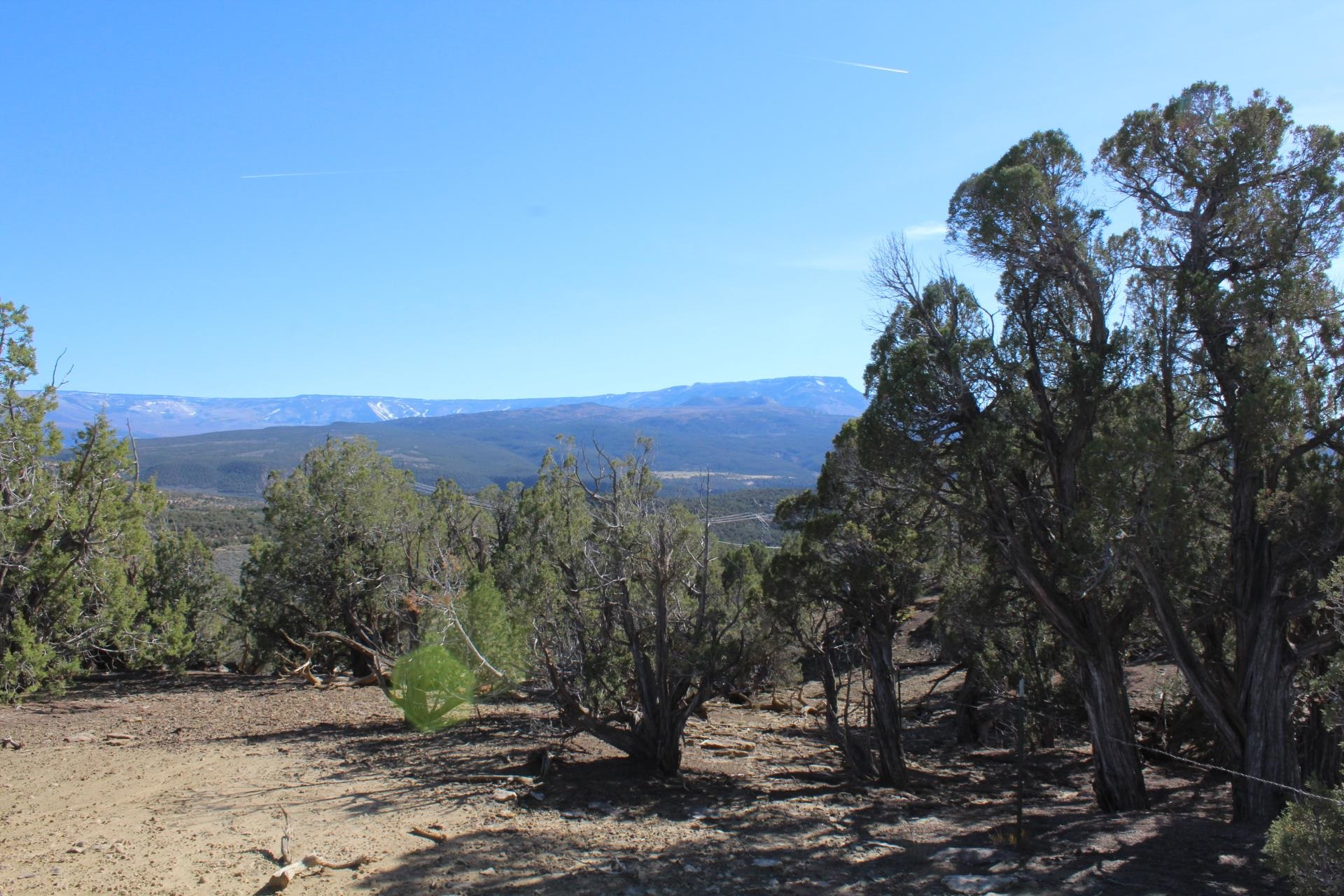 4463 Horse Canyon Road Property Picture 19