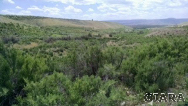 TBD Lands End Road Property Photo - Whitewater, CO real estate listing