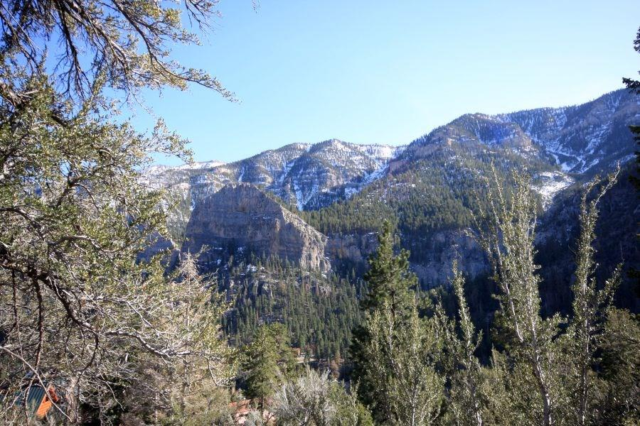 4878 SNOW WHITE Road Property Photo - Mount Charleston, NV real estate listing