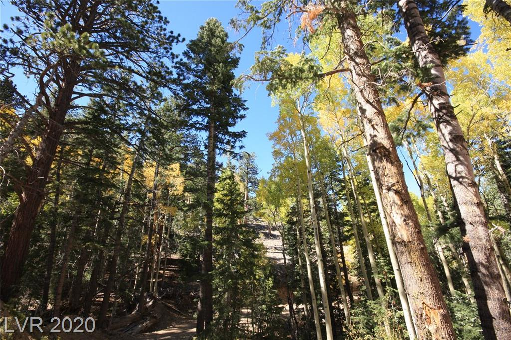 4887 SNOW WHITE Road Property Photo - Mount Charleston, NV real estate listing