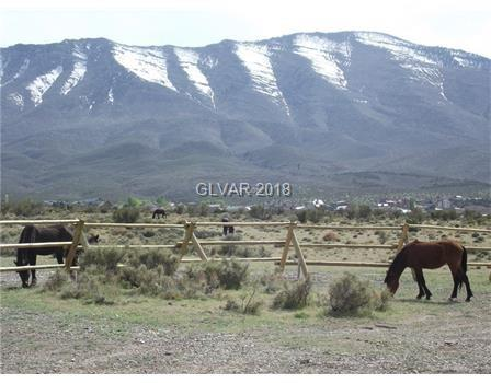 Calvary Property Photo - Cold Creek, NV real estate listing