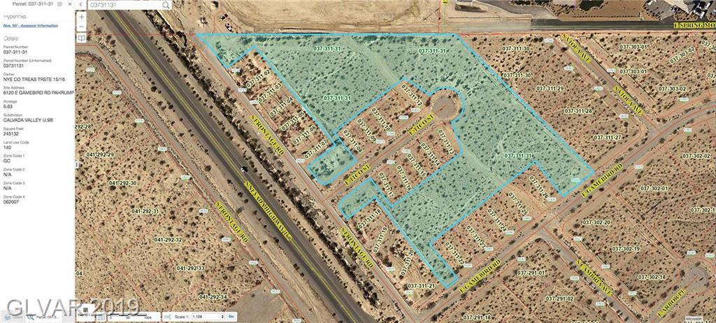 6120 E GAMEBIRD Property Photo - Pahrump, NV real estate listing