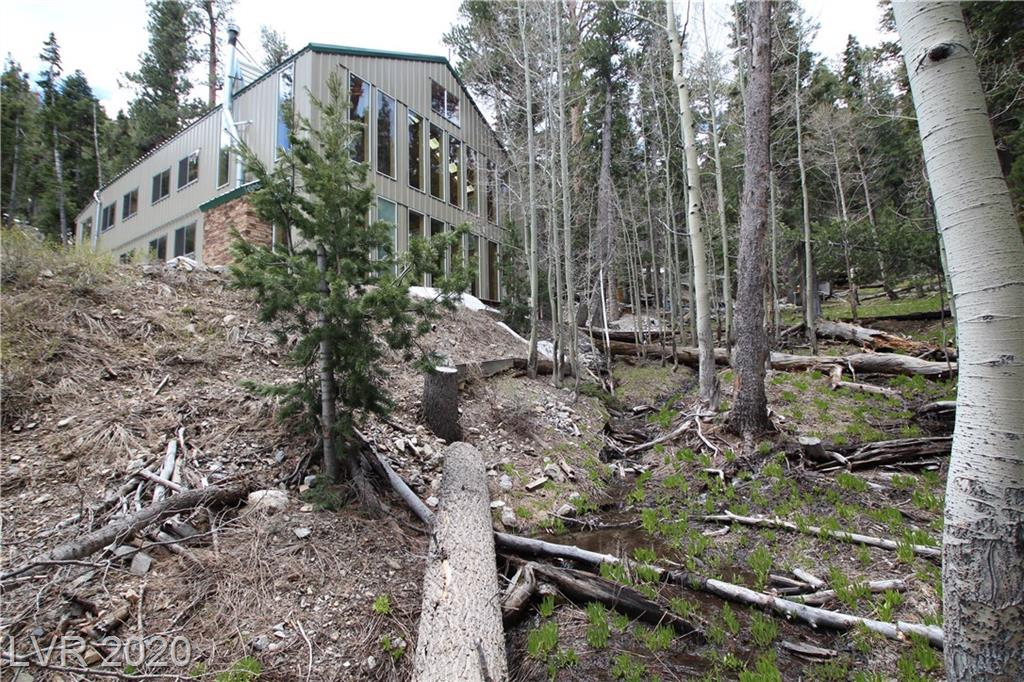 1 Deer Creek Property Photo - Mount Charleston, NV real estate listing