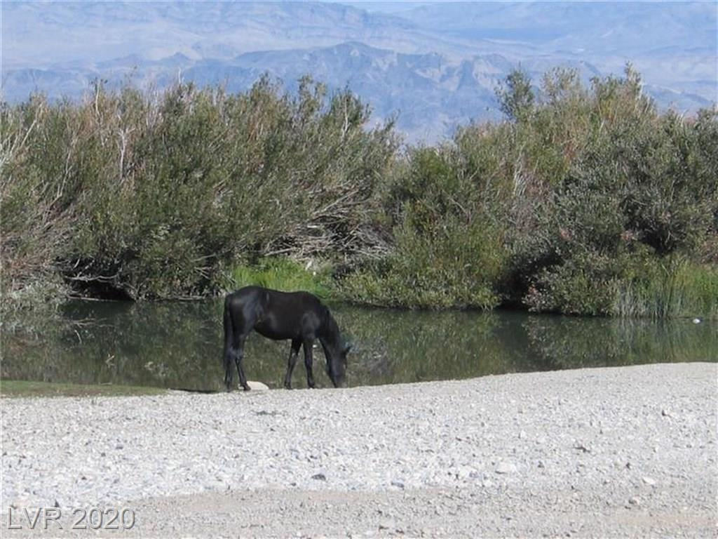 151 Wind Drift Property Photo - Cold Creek, NV real estate listing