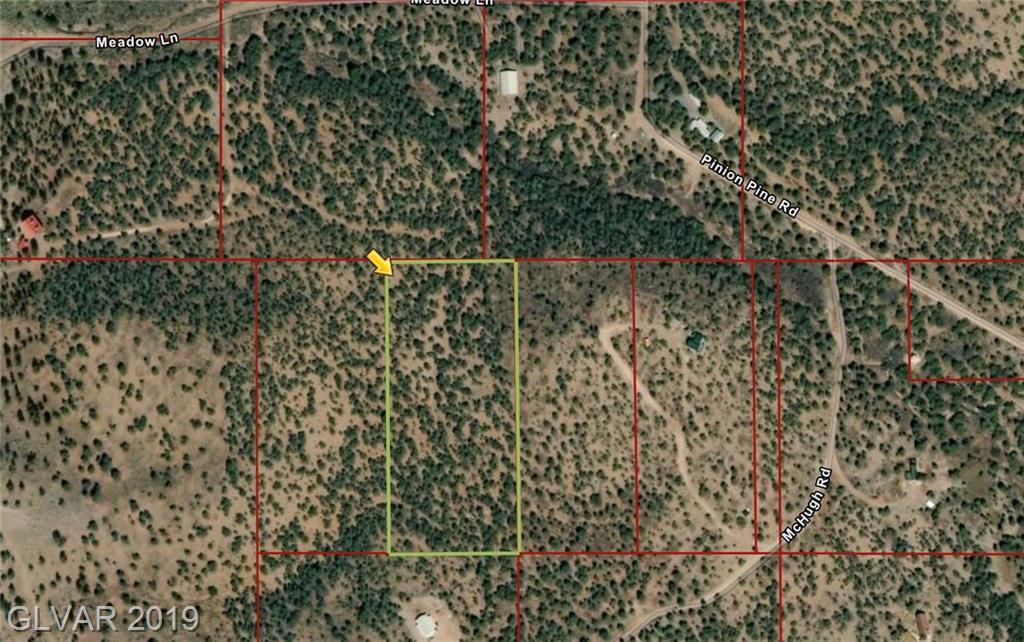 Pinion Pine Property Photo - Pioche, NV real estate listing