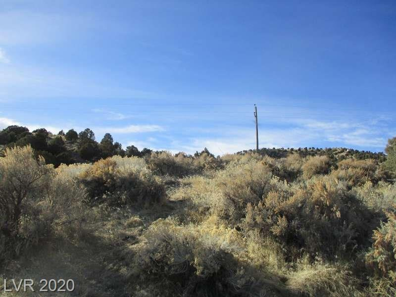 NV Hwy 322-APN 006-261-35 Property Photo - Ursine, NV real estate listing