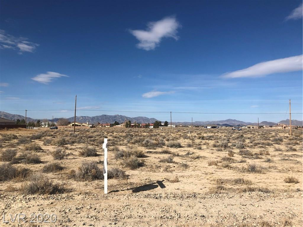 2920 S TORREY PINES Property Photo - Pahrump, NV real estate listing