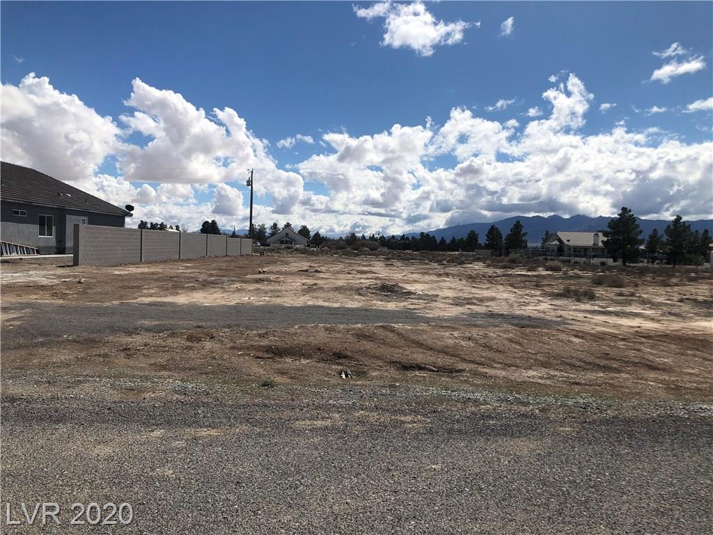 321 E Blackhorn Street Property Photo - Pahrump, NV real estate listing