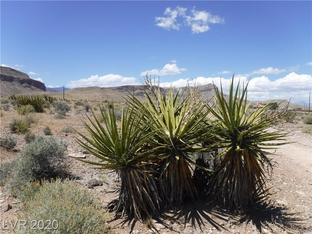 Hwy 160 Blue Diamond Property Photo - Las Vegas, NV real estate listing