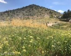 Field Street Property Photo - Pioche, NV real estate listing