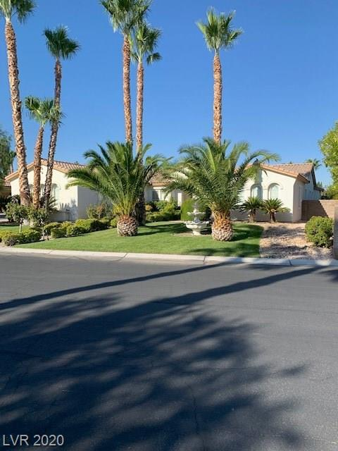 10579 Chillingham Property Photo - Las Vegas, NV real estate listing