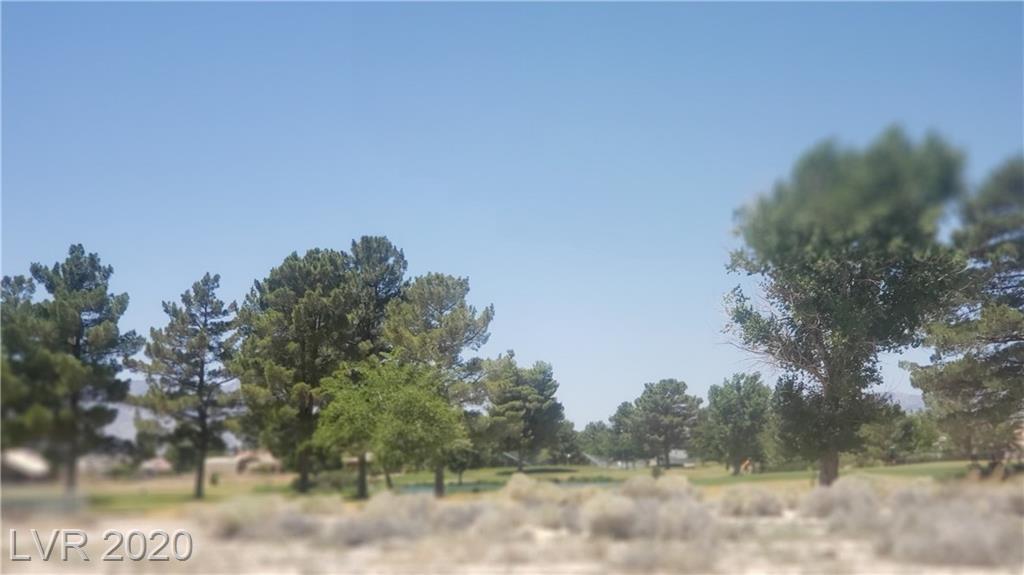 3040 Pebble Beach Avenue Property Photo - Pahrump, NV real estate listing