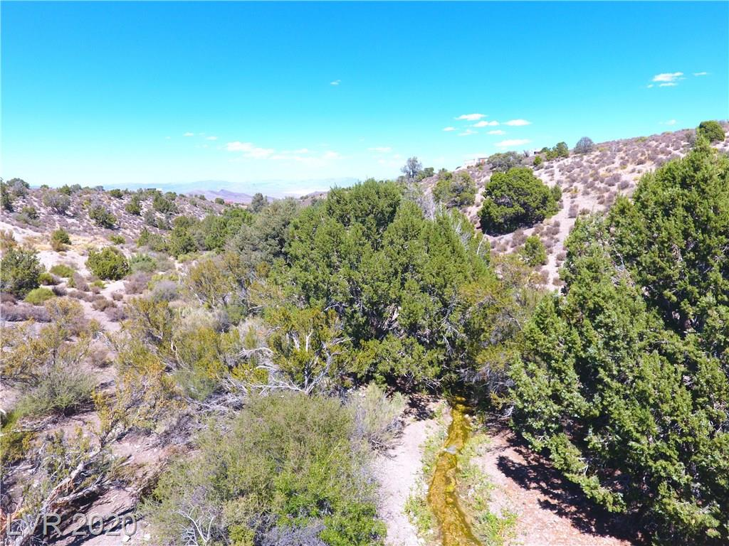 Bugling Bull Road Property Photo - Cold Creek, NV real estate listing