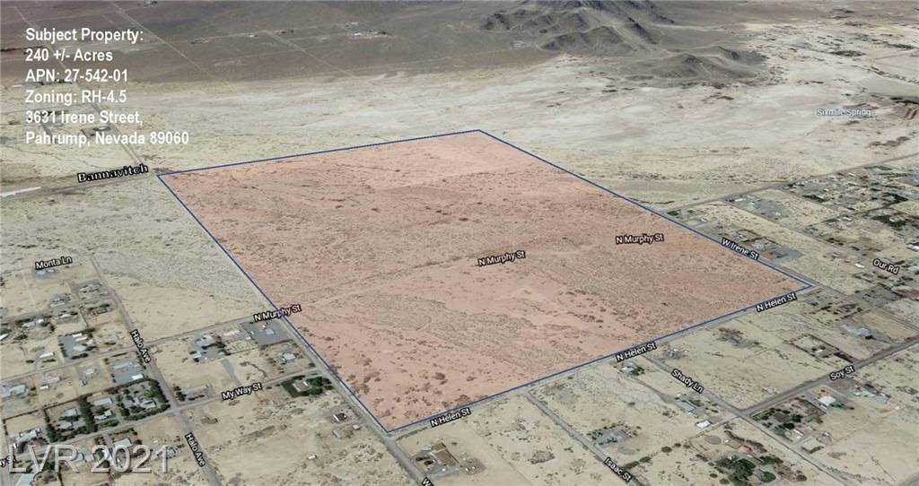 3631 Irene Street Property Photo - Pahrump, NV real estate listing