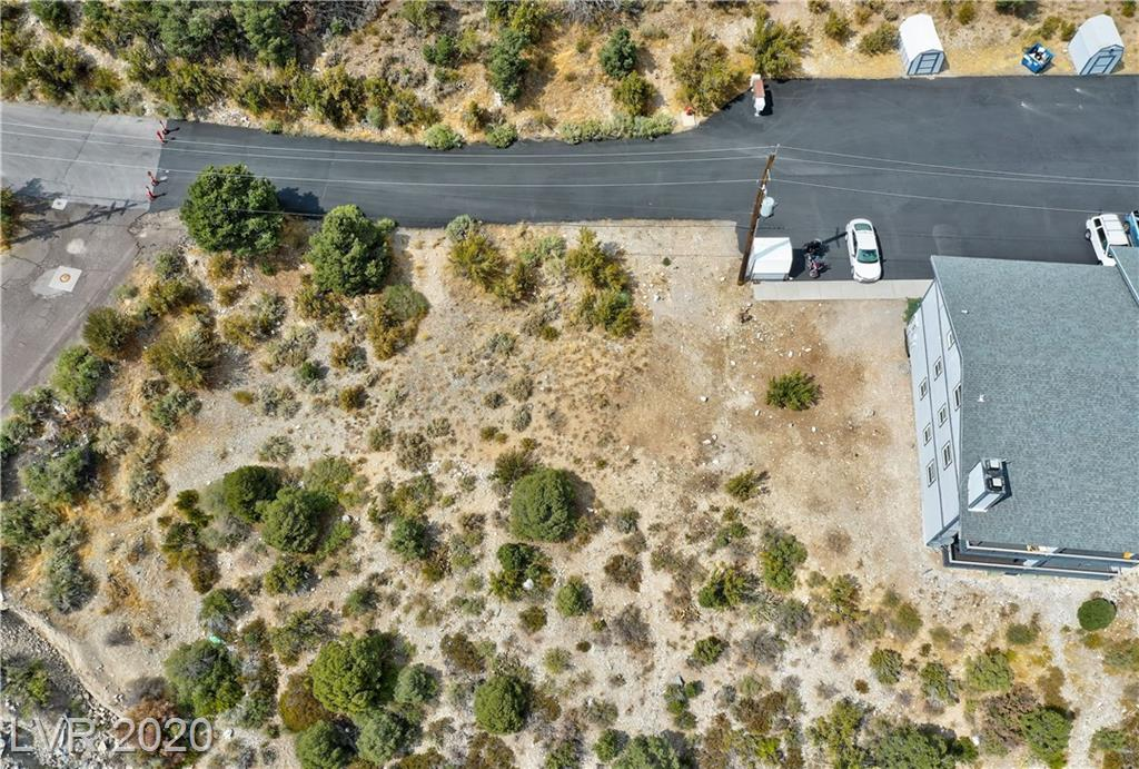 Daines Drive Property Photo - Mount Charleston, NV real estate listing