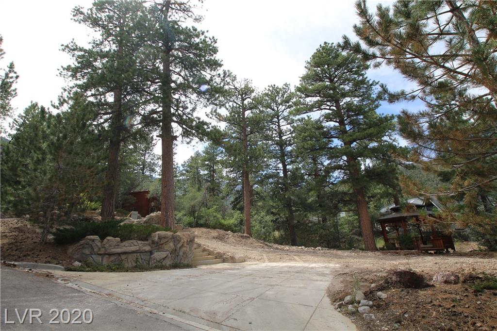 253 SKI TRAIL Road Property Photo - Mount Charleston, NV real estate listing