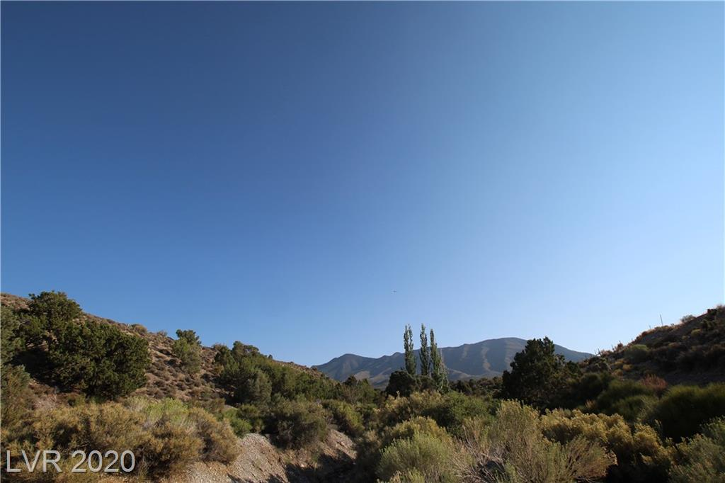 Angeline Property Photo - Cold Creek, NV real estate listing