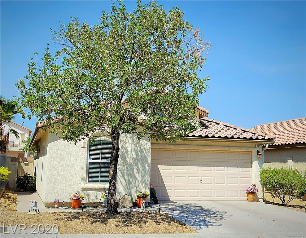 8632 Water Bucket Avenue Property Photo - Las Vegas, NV real estate listing