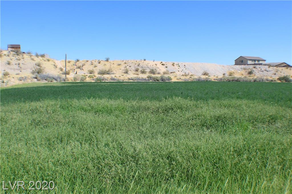PAIUTE Property Photo - Logandale, NV real estate listing