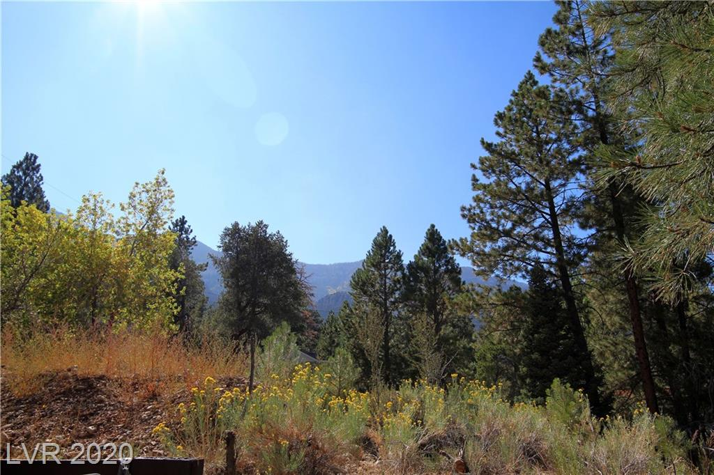 3988 Mont Blanc Way Property Photo - Mount Charleston, NV real estate listing