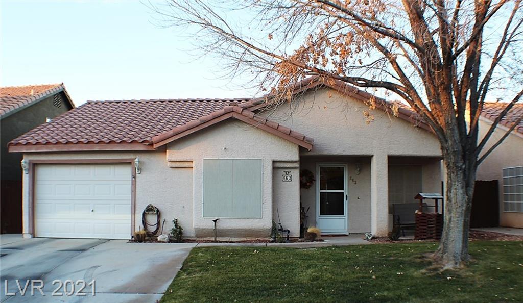 863 Jackrabbit Street Property Photo - Mesquite, NV real estate listing