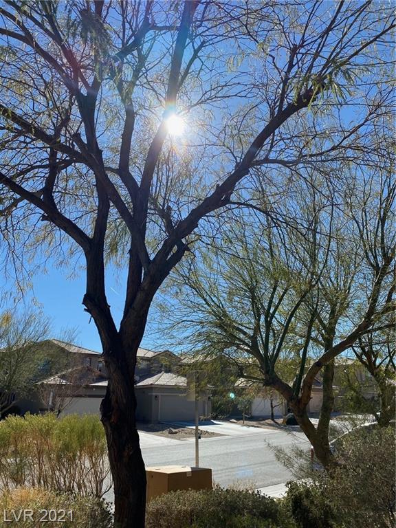1225 Rainy Sky Avenue Property Photo