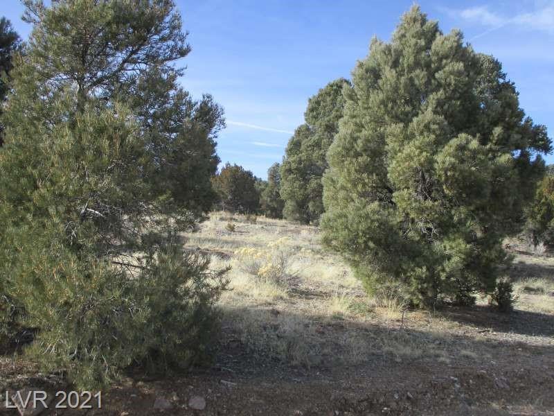 Nv Hwy 322-13.753 Acres Property Photo