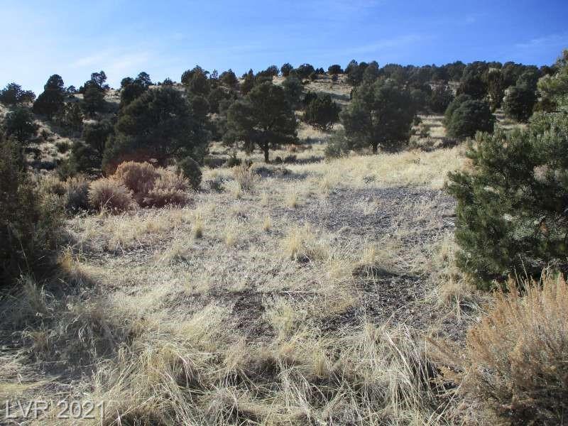 Nv Hwy 322-10.012 Acres Property Photo