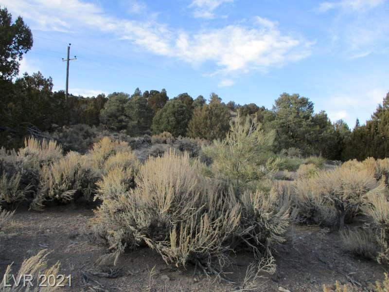 Nv Hwy 322-9.86 Acres Property Photo