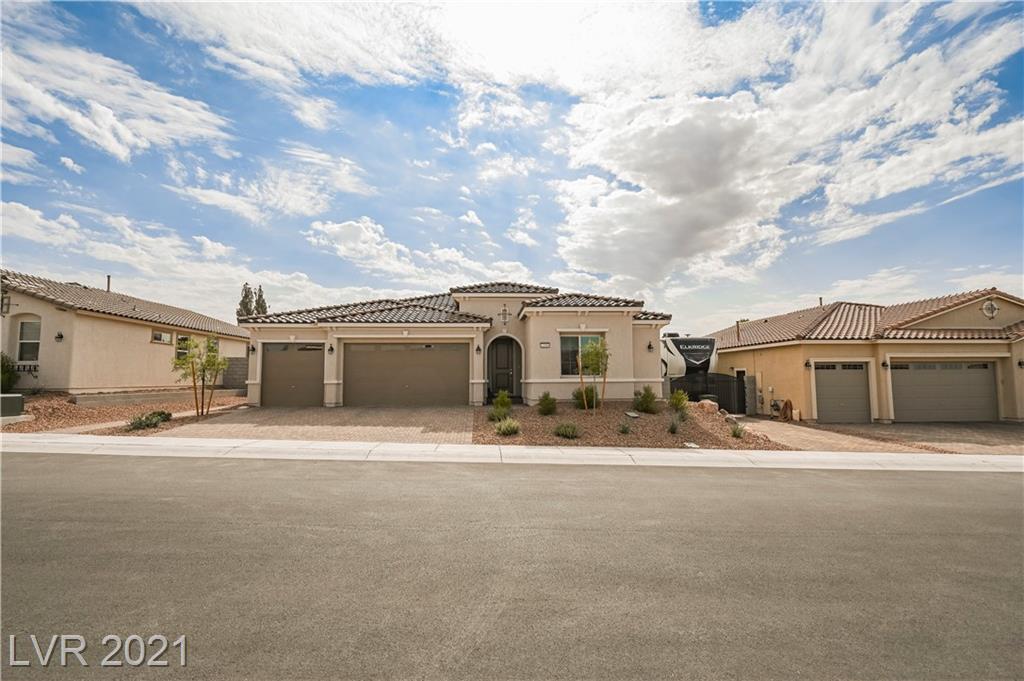 1309 Cattail Falls Street Property Photo 1