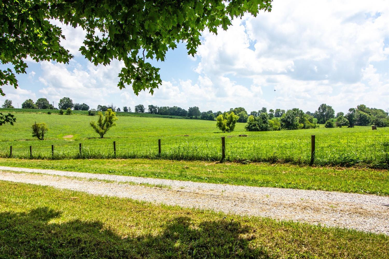 1051 Brentsville Road Property Photo 33