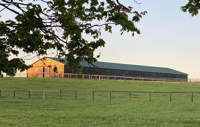 1720 Highway 2141 Property Photo 31