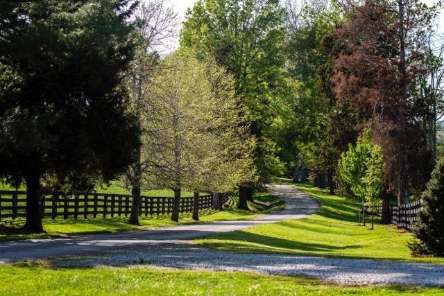 1720 Highway 2141 Property Photo 43