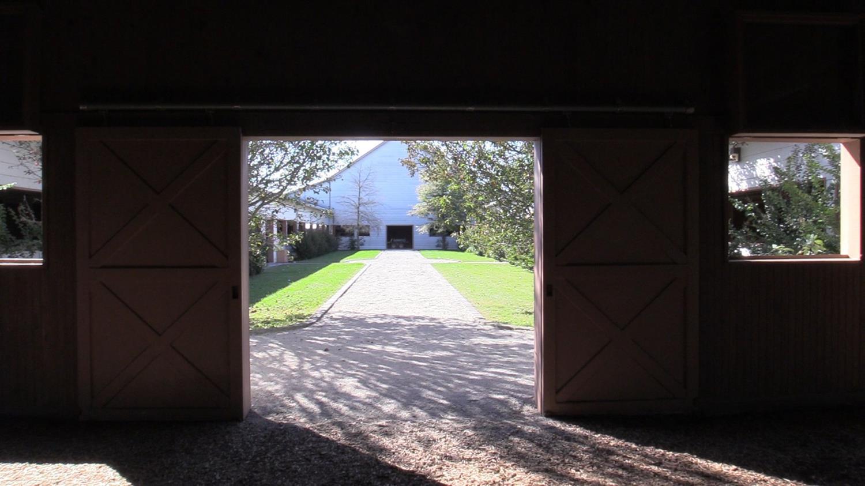 487 Carrick Pike Property Photo 11