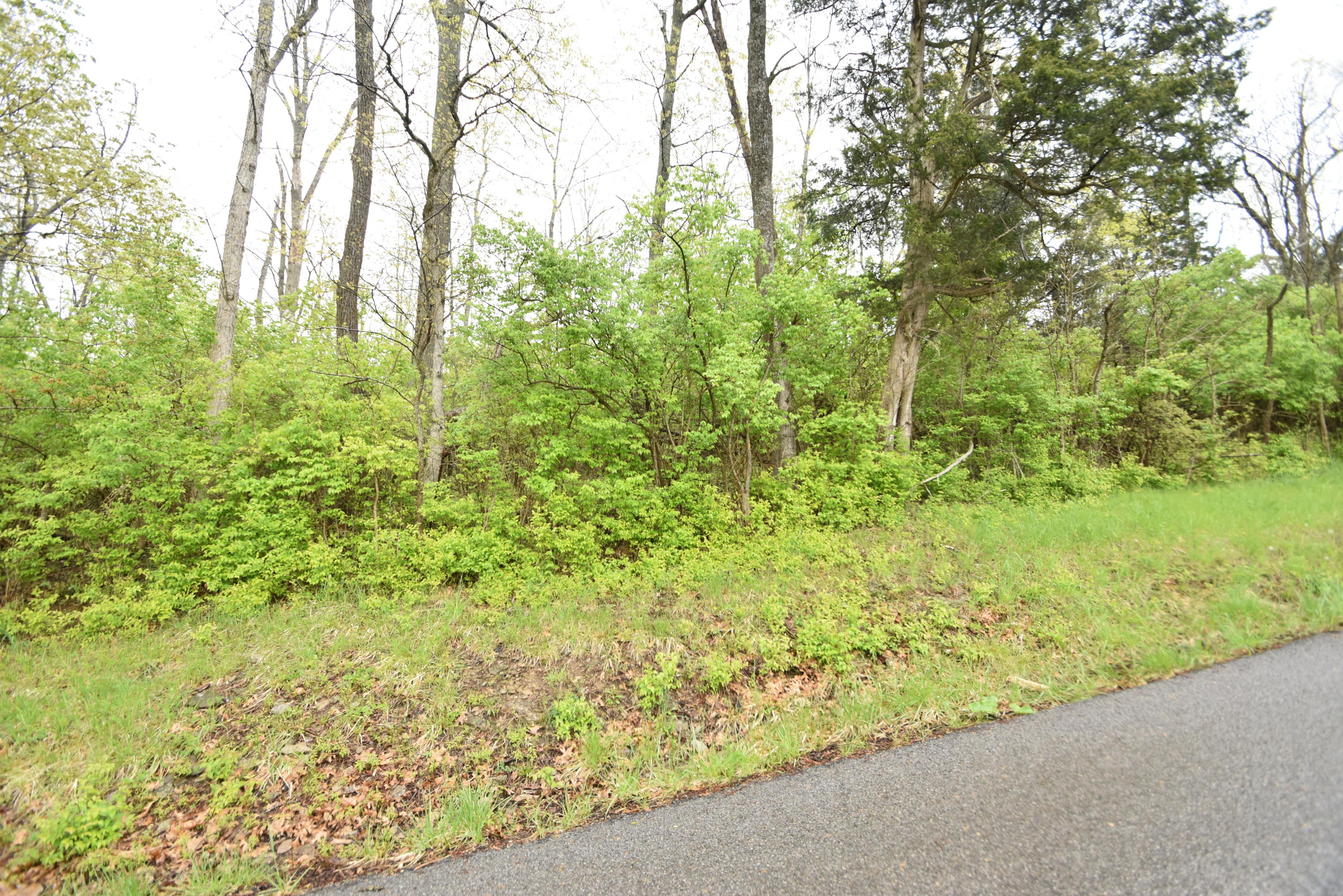 Tract 3 At Dean Road Property Photo 1
