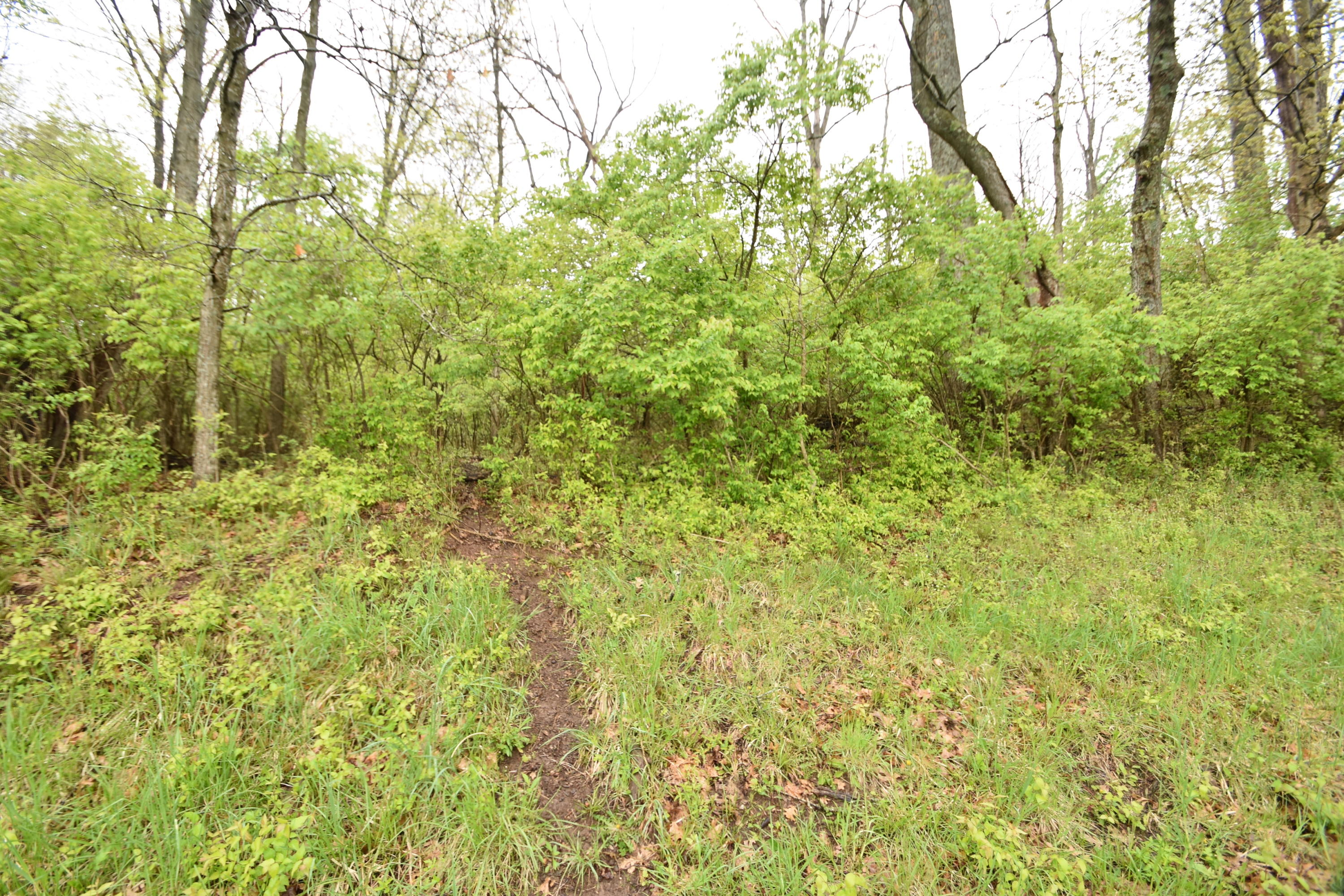 Tract 5 At Dean Road Property Photo 1